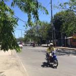 フィリピンではスギによる花粉症の心配なし! 代わりに気を付けるべきことは…