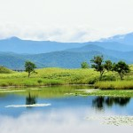 来週、北海道・知床旅行に行ってきます。