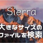 【MacOS】容量を圧迫している大きなサイズのファイルを検索する方法(Sierra版)