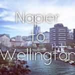 【NZ】ニュージーランド・ノマドツアー その3 ネイピア→ウェリントン 車旅でウェリントン滞在はハードモードだった話