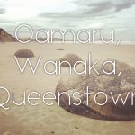 【NZ】ニュージーランド・ノマドツアー その9 オアマル、ワナカ、そしてクイーンズタウン