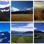 【NZ】ニュージーランドの北島・南島の大きな違いとは!? 実は北の方が温暖