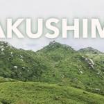 【屋久島】宮之浦岳・花山歩道で撮影したトレッキング映像をYouTubeに公開しました!