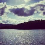 【オーストラリア】世界遺産エリアのデインツリー川でクロコダイル観測クルーズに参加してみた