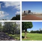 東雲・豊洲・お台場エリアで運動に使える役立つ9つの公園・運動場まとめ Part1