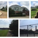 東雲・豊洲・お台場エリアで運動に使える役立つ9つの公園・運動場まとめ Part2